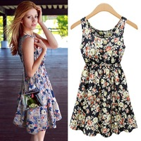 EUROPE Style women dress 2014 summer clothes for women rose printed round neck slim fashion dress F167