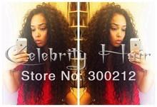 Novos produtos 2014 peruca de cabelo india preço sem cola rendas completo encaracolados perucas afro para as mulheres negras(China (Mainland))