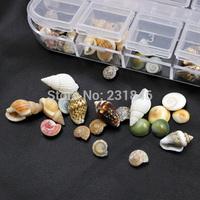 Fashion Box Mix Shape Sea Shell Beads Design 3D Salon Acrylic UV Gel Tips Nail Art Decorations Craft Manicure  Jewelry Supplies