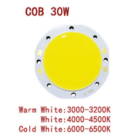 30W  COB LED beads  Pure white surface light source 900mA  Chip Free Shipping