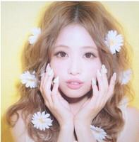 20pcs / lot free shipping fashion new  little daisy flowers hair clip, flowers hair clamp,hair accessory