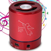 T-2023 Portable Speaker with Hands- free Call /TF Card / Audio / Microphone