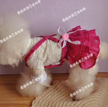 Dog Cotton Dress