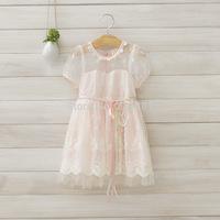 2014 summer girls lace gauze dress ,girl princess dress , pink and white color , 5pcs/lot   DMJ22