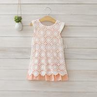 2014 girls lace embroider dress ,dresses for girls , 5pcs/lot   DMJ25