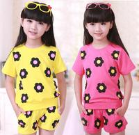 2014 New Summer cotton Flower Kid Girl Clothes Set T Shirt + shorts Pants Children Clothing Sets Girls brand Free Shipping