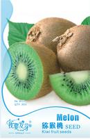 10 Original Packs, 30 seeds / pack, Exotic Fruits Hardy Kiwi Vine Fruit Delicious Fruits
