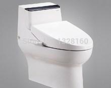 popular toilet one piece
