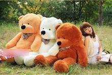 popular teddy bear huge