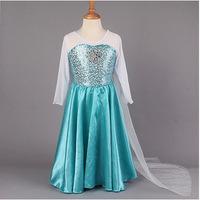 2014 Elsa Dress Custom made Movie Cosplay Dress Summer Anna Girl Dress Frozen Princess Elsa Costume for Children 3-7Y
