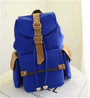 2014 New Style school bag travel backpack   preppy  style bag