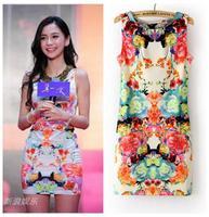 2014 Fashion Boho Summer Sleeveless Sexy Floral Print Dresses Casual Slim Thin Retro Party Women Dress Vestidos