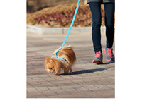 2014 six colors cute plushpolyester for pet chest Classic Pet Dog chest harness Leash Lead set Pet Collar Traction Rope 1.5cm