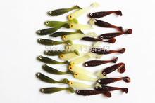 cheap freshwater fish