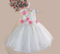wholesale new style girl 2 color flower party dress kids strap white princess dress Evening dress free shipping 6pcs/lot P-01