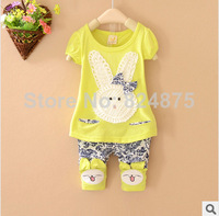 New 2014 summer 2pcs baby girls clothing short-sleeved suit  2-5 age baby girls summer suit  Free shipping