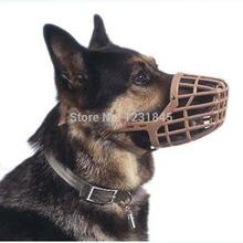 popular muzzle dog
