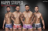 Brand New Fashion Design Thermal Striped Cotton Underwear Boy Sexy Men Boxers Shorts 2pcs/lot