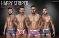 Brand New Fashion Design Thermal Striped 100% Cotton Underwear Boy Sexy Men Boxer Shorts Men's Boxers/ Underpants Men 2pcs/lot