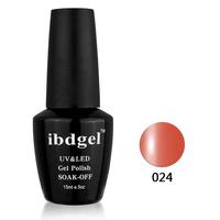24pcs uv gel nail Soak Off Nail Gel Polish Display(22colors+1top coat+1base coat)