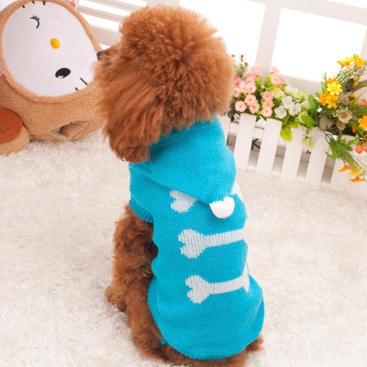 Knitting Patterns Dog Breeds : Free Sweater Knitting Patterns For Small Dogs Dog Breeds Picture