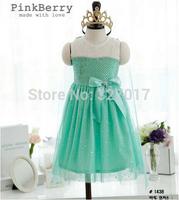 1PCS,New 2014 Frozen Dress Elsa & Anna Summer Dress For Girl Princess Dresses+coat Brand Girls Dress Children Clothing blue pink