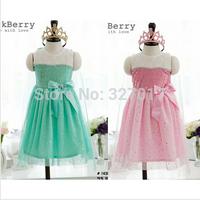 5pcs/1lot,New 2014 Frozen Dress Elsa & Anna Summer Dress For Girl Princess Dresses Brand Girls Dress Children Clothing kids Wear