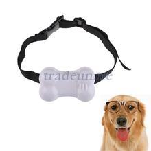 small dog shock collar promotion