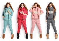 Hot Sale Women Hoodies Thick Cotton Long Sleeve Fashion Clothing Set Sports Suit Women's Tracksuit Hooded+Pants+Vest 3 Piece Set