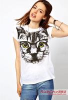 2014 new hot summer in Europe and America cute cat print loose short-sleeved T-shirt casual shirt women t-shirt XL
