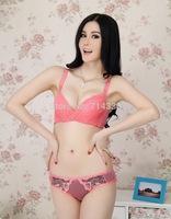 Hot Sale 2014 New Push Up Adjustable Women Bra Set Women's Ladies Sexy Deep V Bra + Brief Set Underwear Lingerie Panties