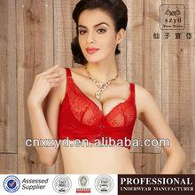 black sheer bra promotion