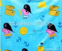 free shipping Factory direct  ems 20PCS/LOT Pink pig sister double-sided velvet blanket Children blanket. best gift