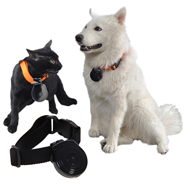 Shipping from US !New Arrival ! Mini Pet Cam Dog &Cat Camera with LCD Support Video Trace Recorder Recording 640x480 Resolution