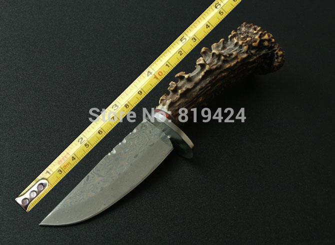 Chinese Deer Chinese Deer Antler Knives