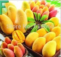 1000g natural and organic Mango powder tea,mangopowder,slimming & Whitening tea,Free Shipping