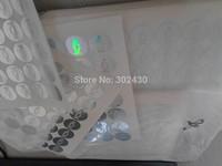 3D silver small bird holograms