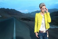 Freeshipping New 2014 Fashion Parkas Winter Jacket  Women Clothing  Color Womens Slim O-Neck  Single Breasted Short Coat ALK910