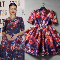 2014 Spring Summer New Women Runway Digital Printing Rose O-Neck Half Sleeve waist type Pleated Casual Dress