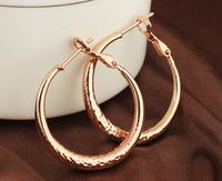 2014 New Trend Gold Plated Hoop Earrings for Girls ER0343