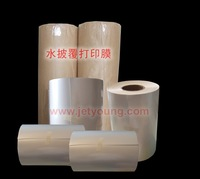 JETYOUNG Blank Water Transfer Printing film-Hydro Graphic Film for Inkjet printer-A3 size 50 pieces/bag