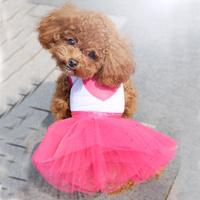 dreambows Free Shipping Dog Cat Shining Heart Print Lace Tutu Dress 71008 Costume DropShipping