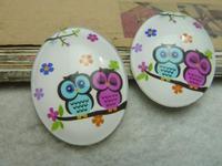 2pcs 30x40mm Handmade Photo Glass Cabochons (owl ) GL 1-13