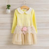 2014 New,girls lace princess dress,children autumn cotton dress,long sleeve,embroidery,flower sashes,4 colors,5 pcs / lot,1506