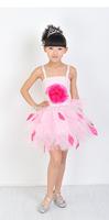 2014 New  Children Dance Wear Latin dance costume girls dance clothes Sequins Children White princess dress IVU