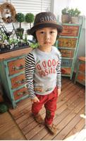 2014 Children Summer Autumn Cute Boys Shirts Streak 2-Colors Shirt Long Sleeved t-Shirt Kids Korean Style Fashion Casual