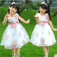 Free shipping new 2014 cute child dresses summer models girls dance dress  flower girl dresses