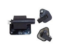Automobile, motorcycle> Professional Parts> Ignition coil>  S11-3705100,  S11-3705110 > EZX-372