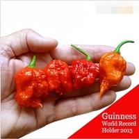"100 SEEDS - 100% Genuine Fresh Rare Red ""Carolina Reaper"" Pepper Seeds (hot chilli ) Organic Vegetable Seeds * Free Shipping"