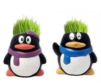 free shipping Penguin grass green potted mini desk ornaments radiation